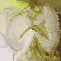 nr 16  60 x 80 cm acrylic on canvas